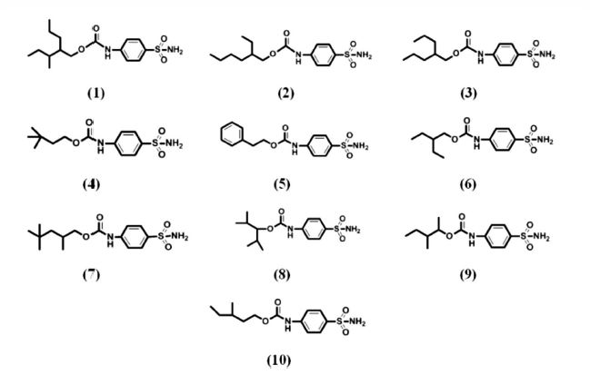 New CNS-Active Carbamate Derivatives for Epilepsy