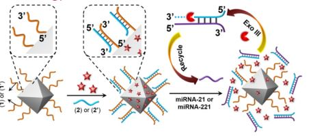 miRNA-Responsive Drug-Loaded NMOFs for targeted Treatment of Cancer
