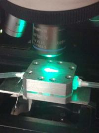 Microfluidics device for SERS