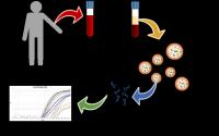 Method for diagnosing Hereditary Hemorrhagic Telangiectasia (HHT)