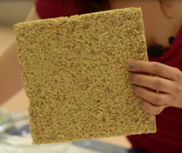 New bio-based insulation material from vegetal pith and natural binders